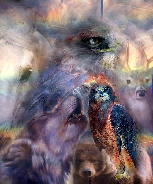A la rencontre de notre énergie animale