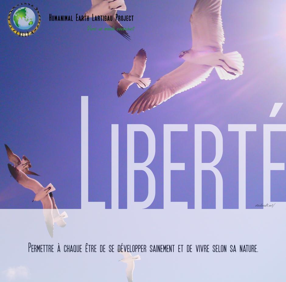 La liberté c'est quoi pour toi?